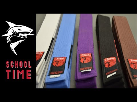 Jiu-Jitsu BJJ Belt System Explained