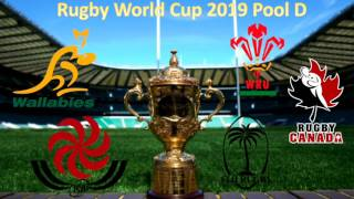 Rugby World Cup 2019 Pool D Preview & Predictions with Cornflake!!
