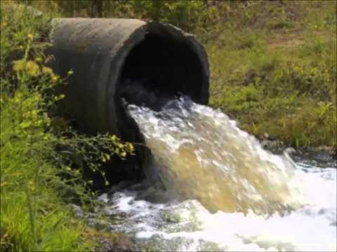 СП 11 102 97 Инженерно экологические изыскания для