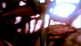 Pepe Arcade - Yukon (Zentex remix)