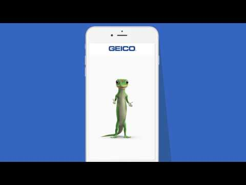 Make An Insurance Payment Online, By Phone & More | GEICO
