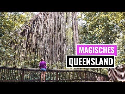 AUSTRALIEN - Queensland - ROAD TRIP - Kuranda | Vlog
