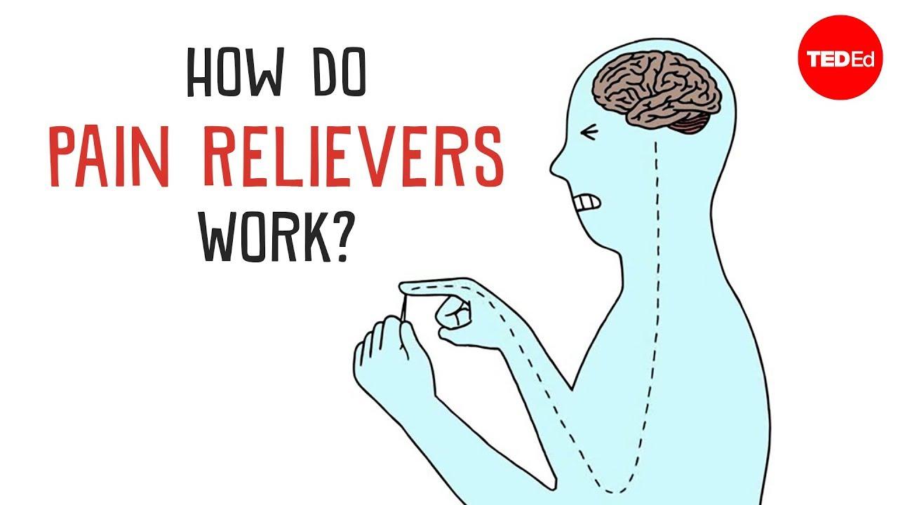 How do pain relievers work  George Zaidan  YouTube
