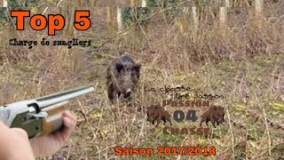 TOP 5 de charge de sangliers!! Attack of Wild Boar !!!
