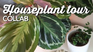 Houseplant Tour Collab | A Thousand Words