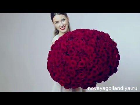 Большие букеты из 151 розы по маленькой цене неприлично большие букеты из роз преподносят обычно по особенным случаям таким как: день.