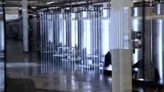 Tour CBR's Stem Cell Storage Facility | Cord Blood Registry