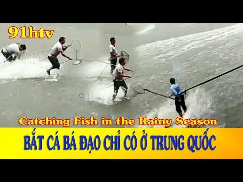 Chỉ Có Tại Trung Quốc | Cách Bắt Cá Bá Đạo Điên Cuồng Nhất || Bắt Cá Mùa Mưa