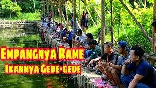 Tes Umpan Dikolam Pemancingan Air Hijau Gacor Bro   Fishing Trip Episode #1