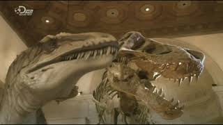 Dinosaur Revolution/Dinotasia - Acrocanthosaurus atokensis & Tenontosaurus