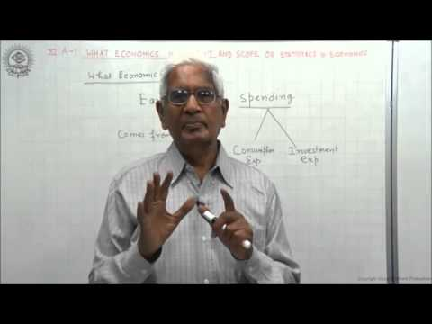 Meaning of Statistics Class XI Economics by S K Agarwala