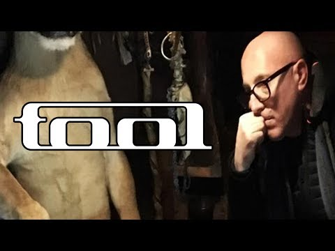 What Is Happening With Tool? | Rock Feed