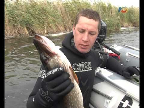 О рыбалке в Донецкой области