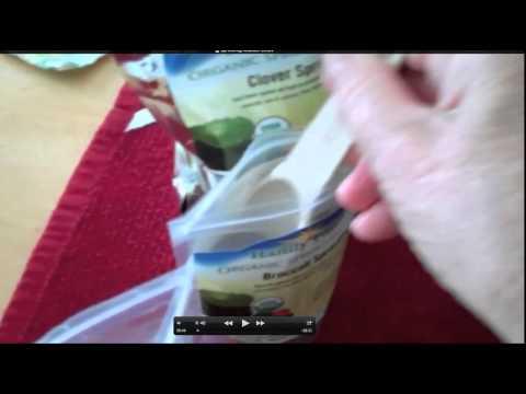 Broccoli Sprouts Nutrition
