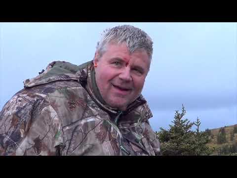 Moose Hunting In Northern B C