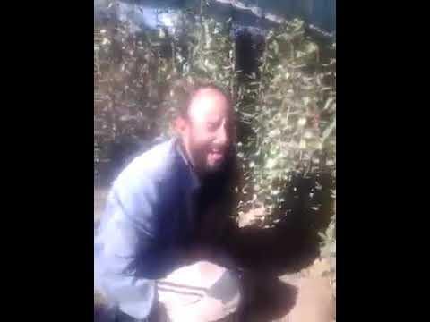 فيديو: مزارع قات بمحافظة ذمار يجهش بالبكاء ويصرخ نتيجة ضربة البرد التي اصابت كامل مزرعتة