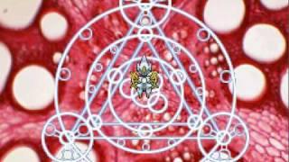 Pokemon Heart Gold: Arceus يخلق Giratina البيض