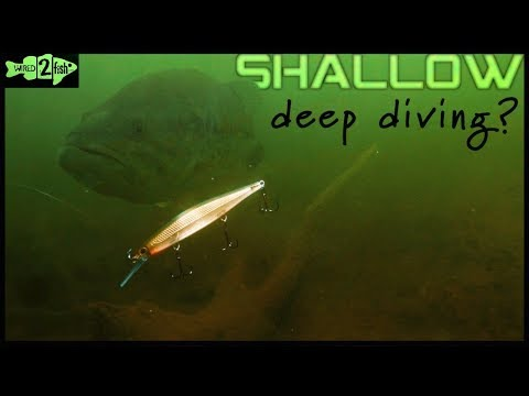 Why Fish Deep-Diving Jerkbaits In Shallow Water?
