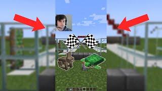 Rabbit vs Turtle Race in Minecraft #shorts