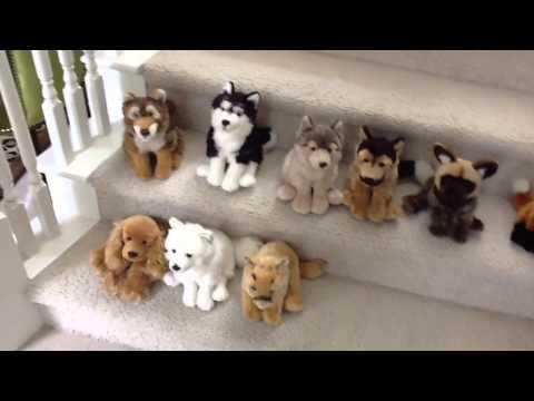 My Signature Webkinz Collection Youtube