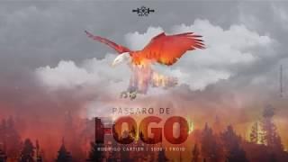 RODRIGO CARTIER PART. 3030 & FROID - PÁSSARO DE FOGO 🦅 (PROD. LK)