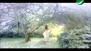 Best Arabic Music Radio   Video Clips   Download Arabic MP3 MP4 ListenArabic com
