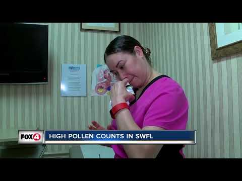 High Pollen Counts In Southwest Florida