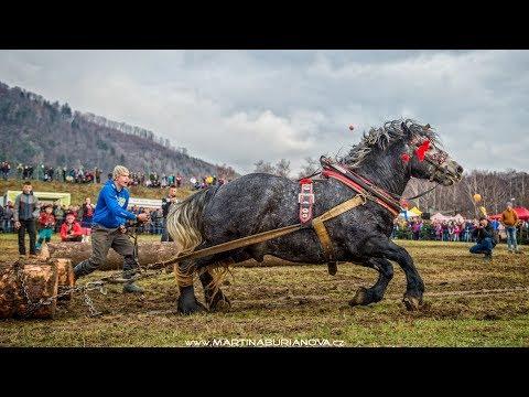 Furmanské preteky (Kľačianská podkova 2018)