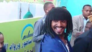 محمد حسن الماحي / شيخ التوم