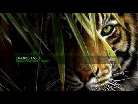 R3hab vs Skytech  Fafaq - Tiger [Bass Boosted]