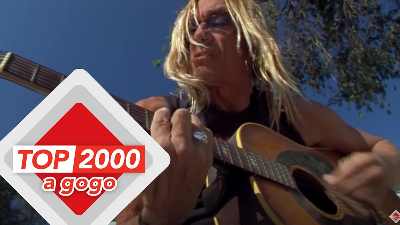 Download Iggy Pop - Lust for Life   Unplugged