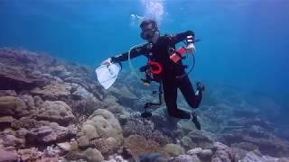 2018 Palau Dive - Day3