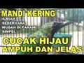 Tips Mandi Kering Cucak Hijau Ampuh Turunkan Birahi Dengan Cepat  Mp3 - Mp4 Download