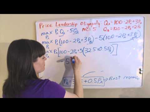 Price Leadership Duopoly