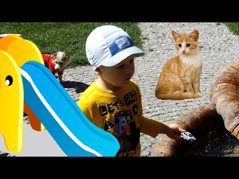 Funny kid playing with toy cars 🚗 Coming down the hill 😊Stroking a cat 🐱Videos for kids