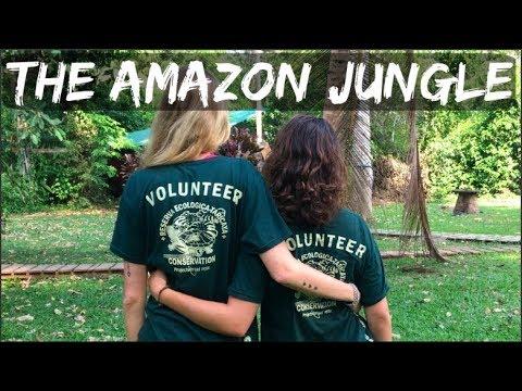 Travel Video - The Amazon Jungle - Peru