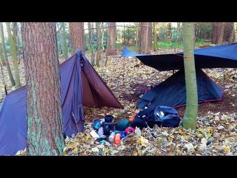 WILD CAMP IN THETFORD FOREST