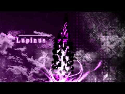 a_hisa - Lupinus