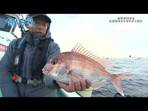 松本圭一の東京湾コマセ真鯛釣り!