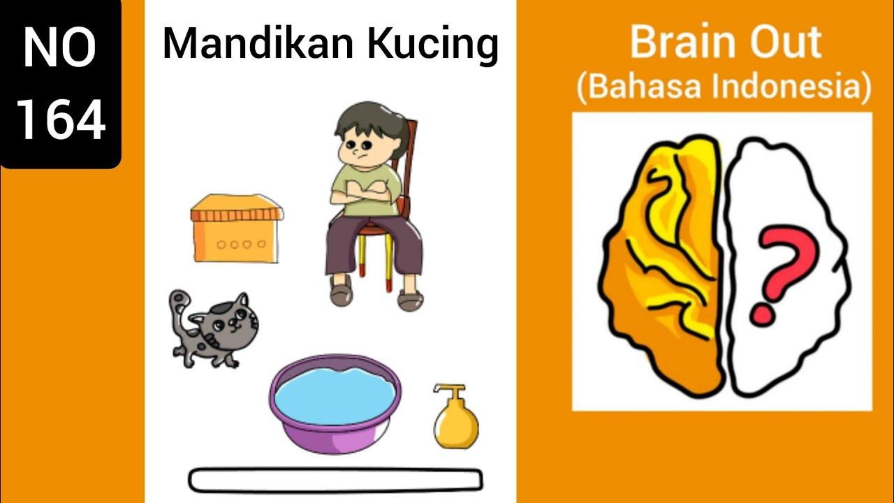 Brain Out Level 164 Mandikan Kucing