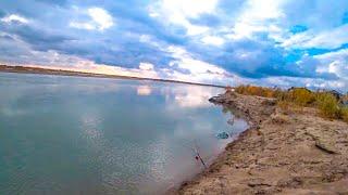 ОСЕННИЙ ЖОР РЫБАЛКА на ЗАКИДУШКИ с НОЧЕВКОЙ Река ИЛИ Сазан Жерех Клев есть