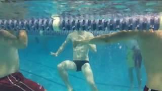 Tread water - Swim Workout
