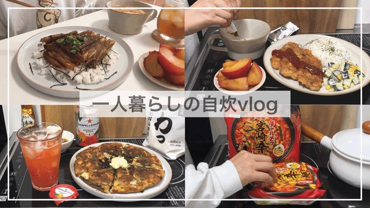 一人暮らし自炊派の食事vlog🍜/チヂミ風お好み焼き、おすすめのインスタントラーメン、ハマってる紅茶、茄子の蒲焼き、豚肉のピカタ