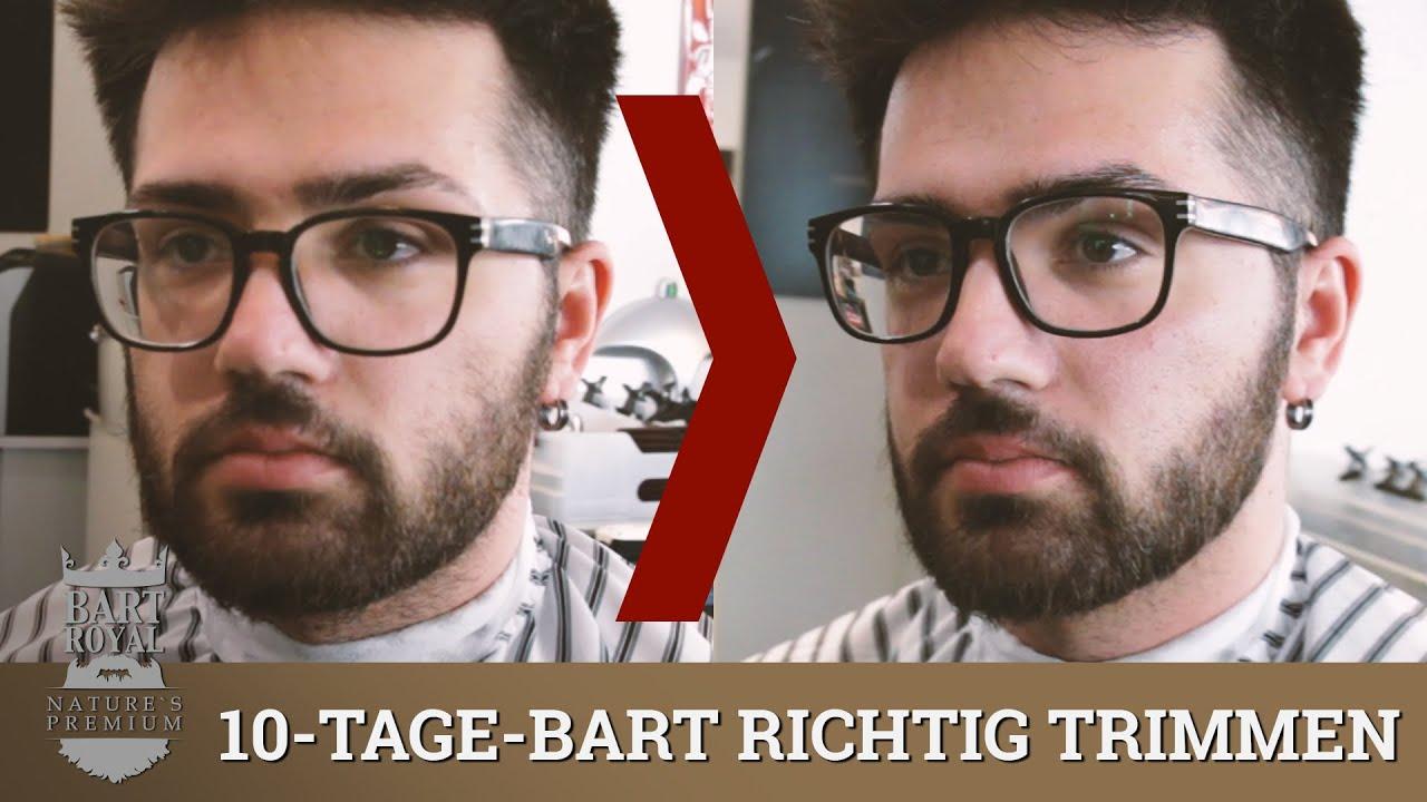 3 Tage Bart Englisch