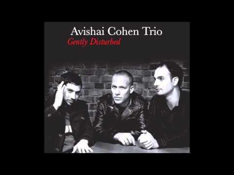 Avishai Cohen - Eleven Wives
