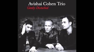 Video Avishai Cohen - Eleven Wives download MP3, 3GP, MP4, WEBM, AVI, FLV Oktober 2018