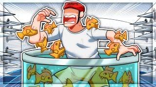 Piranhas Are TERRIFYING in Happy Room