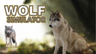 Wolf Simulator Gameplay [PC]