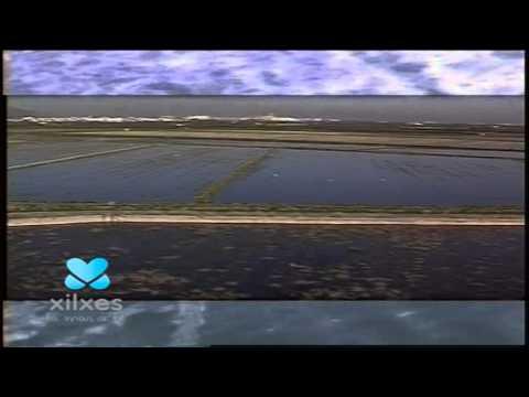 Spot Promocional Xilxes