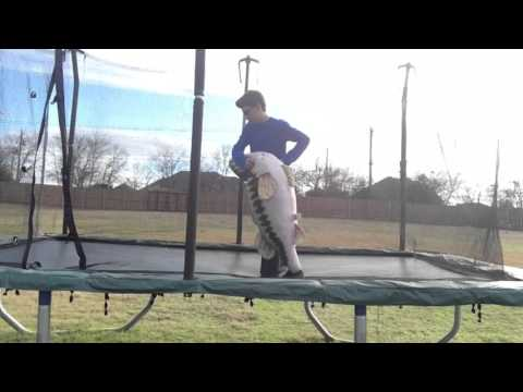 WWE Moves on Trampoline Continued
